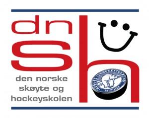 logo_dnsh